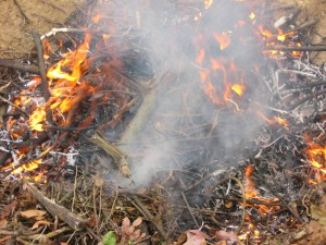 blog-burn process